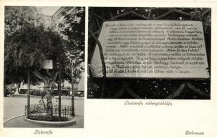 1940 Debrecen, Líciumfa