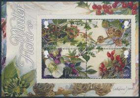 2014 Téli természet, virágok Mi blokk 91