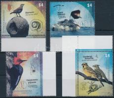 Birds margin set, Madarak ívszéli sor