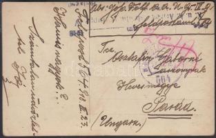1918 Tábori posta képeslap K.u.k. Armeeausbildungsgruppe + FP 564