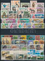Animals 60 stamps, Állat motívum 60 db bélyeg közte teljes sorok és másodpéldányok 2 stecklapon