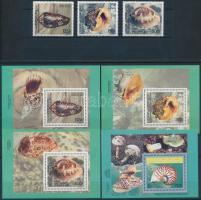 Sea snails and shellfish set + block, Tengeri csigák és kagylók sor + blokk