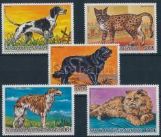 Dogs and cats set, Kutyák és macskák sor