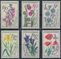 Flower set, Virágok sor