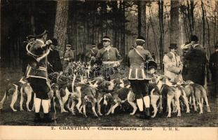 Chantilly, Chasse a Courre / hunting dogs, Chantilly, vadászkutyák