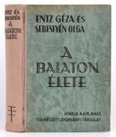 Entz Géza, Sebestyén Olga: A Balaton élete. Bp., 1942 Királyi Magyar Természettudományi Társulat. 44 táblával és 67 szövegképpel. Kiadói félvászonkötésben, a vászon két helyen enyhén foltos.