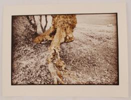 cca 1980 Nagy Csilla: Cím nélkül, pecséttel jelzett vintage fotóművészeti alkotás, 30x40 cm