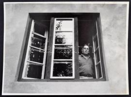 Gálfalvi György (1942-) József Attila-díjas romániai magyar író, szerkesztő fotója, 18x24cm