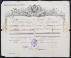 1909 Osztrák-Cseh végelbocsájtó levél, obsit. Szakadásokkal. / Austrian- Czech disarmement letter with tears
