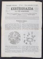 1867 Kertészgazda s a nép kertésze, egyetemes gazdászati és kertészeti képes hetilap. Szerk.: Girókuti P. Ferenc. 3. évf. 37. sz. Pest, Emich Gusztáv. Érdekes írásokkal, illusztrációkkal