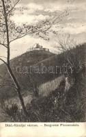 Detrekőváralja, Plossenstein, Plavecké Podhradie; várrom, kiadja a Malaczkai Könyvnyomda / castle ruins (EK)