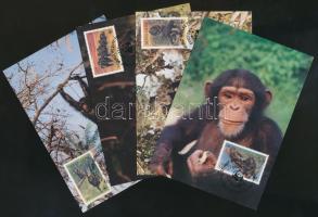 WWF: Chimpanzees set + 4 CM + 4 FDC, WWF: Csimpánzok sor + 4 db CM + 4 db FDC
