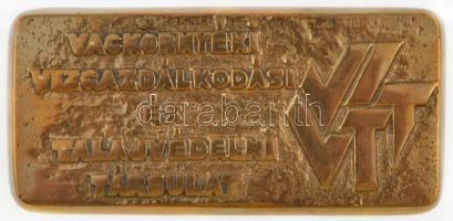 DN Váckörnyéki Vízgazdálkodási és Talajvédelmi Társulat egyoldalas Br plakett (122x58,5mm) T:2