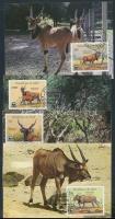 1984 WWF antilop sor Mi 1078-1081 CM