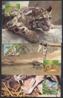 1995 WWF párduc sor Mi 557-560 CM