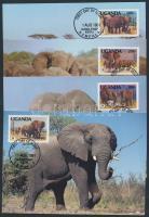 WWF elefánt sor CM, WWF elephant set on CM