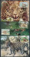 WWF jaguar set on CM, WWF jaguár sor CM