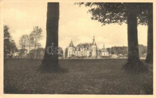 Assenois, Chateau / castle (EK)