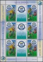 2004 FIFA kisív Mi: 692-693