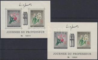 1961 UNESCO blokk sor Mi 19 A-B