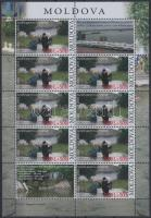 2010 Árvíz kisív Mi 713