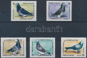 Pigeon breeding, Bird's set, Galambtenyésztés; Madár sor