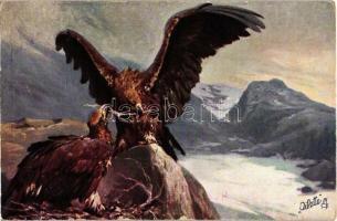 Eagle, Raphael Tuck & Sons Oilette Serie Adler No. 584 B. s: Hans Schmidt