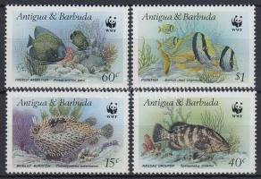 WWF Fishes set, WWF: Halak sor