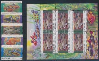 1998 Díszhalak sor Mi 646-650 + kisív Mi 648