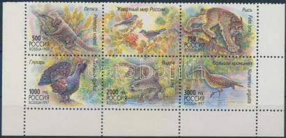 1997 Állat sor ívsarki hatostömbben Mi 597-601