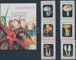Gomba sor + blokk Mushroom set + block