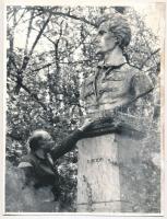Domokos Géza (1928-2007) erdélyi magyar író, politikus, műfordító fotója, 24x18cm