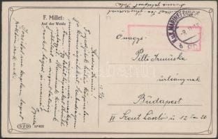 1917 Képeslap / Postcard Briefzensur des k. und k. Seefliegerkorps Pola