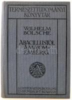 Wilhelm Bölsche: A bacillustól a majomemberig. Bp., 1910, Athenaeum. Kiadói egészvászon sorozatkötésben, kifogástalan, újszerű állapotban.