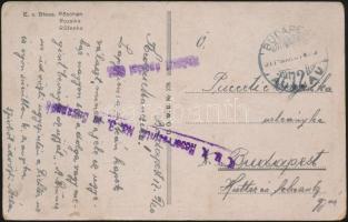 1917 Tábori posta képeslap K.u.k. Reservespital No.3. in Budapest + Katonai ápolási ügy.