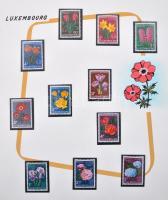 Tartalmas virág gyűjtemény kézzel festett albumlapokon listával, barna karton dobozban