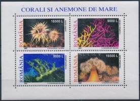 Corals block, Korallok blokk