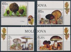 2007 Gombák ívsarki sor Mi 578-581
