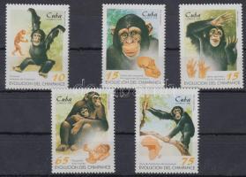 Monkey set, Majmok sor