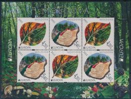 2011 Europa CEPT, Az erdő bélyegfüzet lap H-Blatt 13 (Mi 749-750)