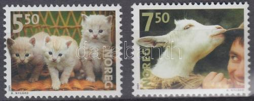 Háziállatok sor Domestic animals set