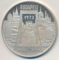 Csúcs Viktória (1934-) 1973. Pest-Buda-Óbuda egyesítésének centenáriuma Ag emlékérem (25,28g/0.800/42,5mm) T:PP felületi karc
