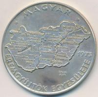 Csúcs Viktória (1934-) 1973. MÉE Budapest - Magyarország Ag tagsági emlékérem (25,28g/0.800/42,5mm) T:1-