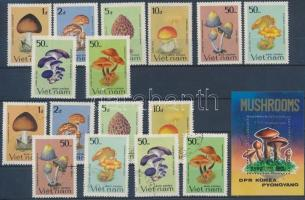 Gomba motívum 1 db pecsételt észak-koreai blokk + postatiszta és pecsételt vietnami sor