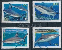 WWF: Cápák sor WWF Sharks set