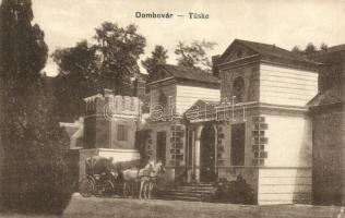 Tüske, Dombóvár, kastély