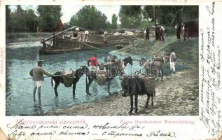 Nagybecskerek, Zrenjanin; Nagybecskereki vízvezeték, vízhordó férfiak szamarakkal / canal, water carrying men with donkeys (fa)