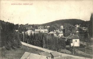 Borszék, Borsec; látkép, kiadja Pollatschek Gyula / general view