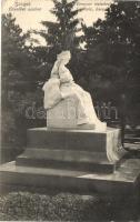 Szeged, Erzsébet szobor, Brenner testvérek felvétele
