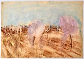 Somlai Vilma (1938-2007): Tavasz a kertben. Akvarell, papír, jelzett, 43×60 cm